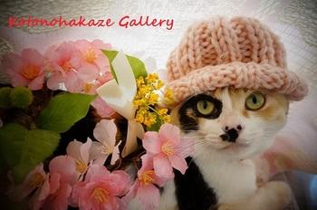 桜とメイ1.jpg