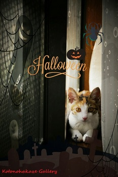 Halloween4-4.jpg