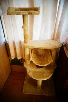cattower1.jpg