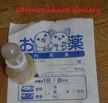 hogoneko5.jpg