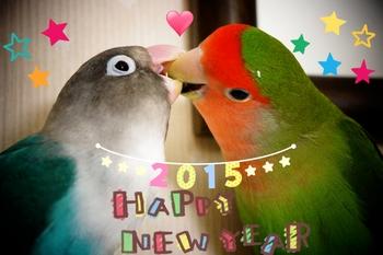 2014-12-31-19-19-42_deco.jpg