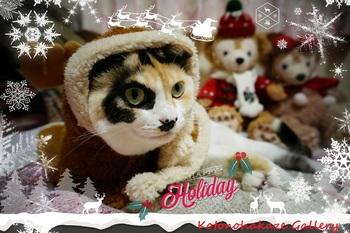 Christmas2a.jpg