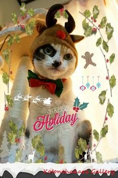 Christmas4a.jpg