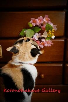 桜とメイ2.jpg