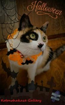 Halloween6-6.jpg